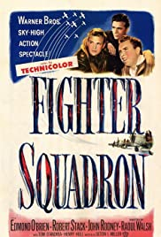 Fighter Squadron Poster