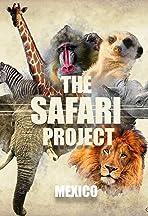 The Safari Project - Mexico