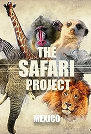 The Safari Project - Mexico Poster
