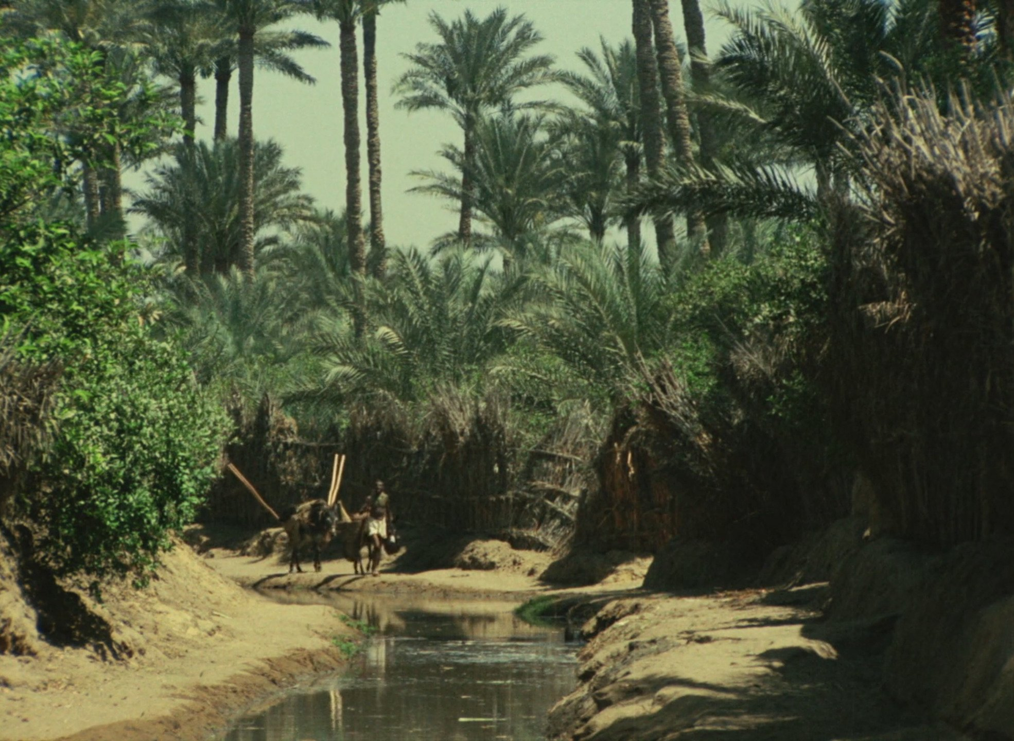 El-Fallâh el-fasîh (1970)