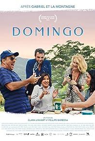Primary photo for Domingo