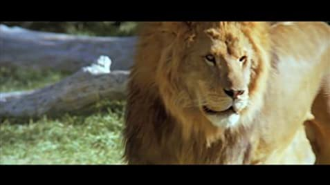 the orphan keeper movie lion