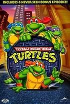 Nija Turtles