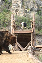 Man vs Bear Poster