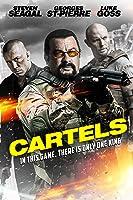 Zabić Salazar – HD / Cartels / Killing Salazar – Lektor – 2016