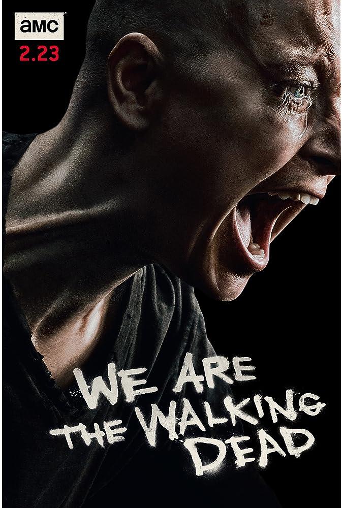 The Walking Dead (2010– )