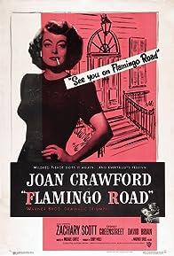 Primary photo for Flamingo Road
