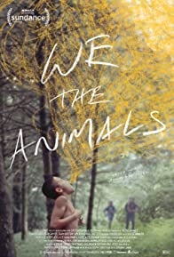 Primary photo for We the Animals