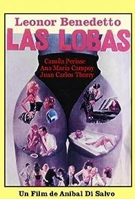 Primary photo for Las lobas
