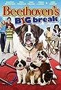 Beethoven's Big Break (2008) Poster