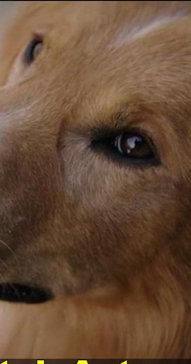 A Dog S Purpose A Writer S Purpose Video 2017 Imdb