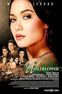 Wildflower (2017–2018)