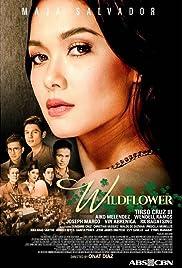 Wildflower (TV Series 2017–2018) - IMDb