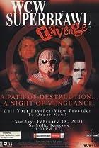 WCW SuperBrawl Revenge