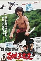 Ninja bugeicho momochi sandayu