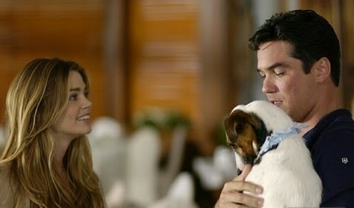 Denise Richards and Dean Cain in I Do (But I Don't) (2004)