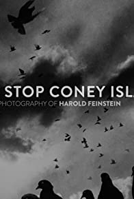 Primary photo for Last Stop Coney Island: The Life and Photography of Harold Feinstein