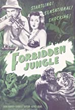 Forbidden Jungle