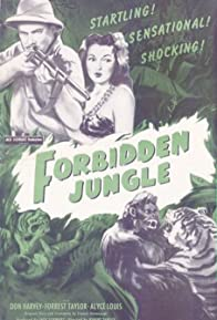 Primary photo for Forbidden Jungle