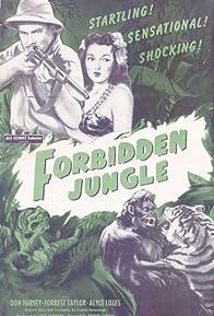 Primary photo for Forbidden Jungle