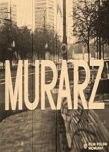 Watching a 3d movie high Murarz by Krzysztof Kieslowski [1680x1050]