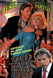 Wild Texas Wind Poster