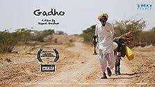Gadho (2018)