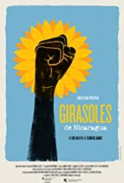Sunflowers of Nicaragua