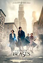 Primary image for Fantastic Beasts and Where to Find Them: The Goldstein Sisters