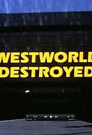 Westworld Destroyed Poster