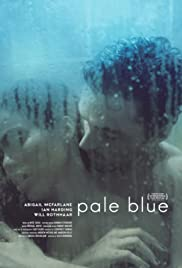 Pale Blue Poster