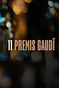 Primary photo for XI Premis Gaudí