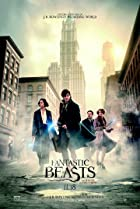 Fantastic Beasts and Where to Find Them: The New Wizards and Witches (2017) Poster