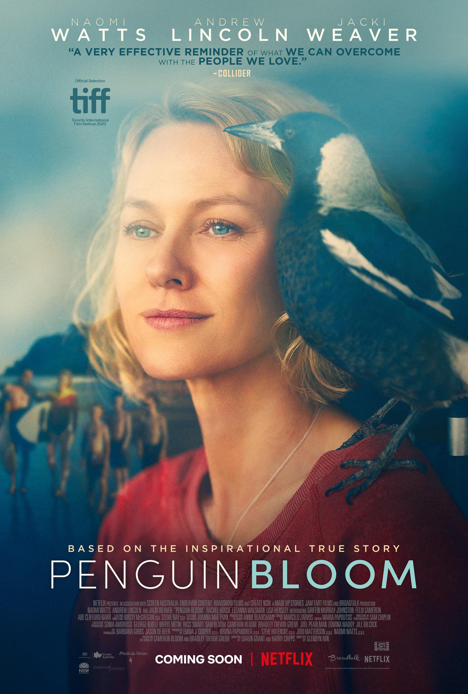 Filme Penguin Bloom - CAM - Legendado Download