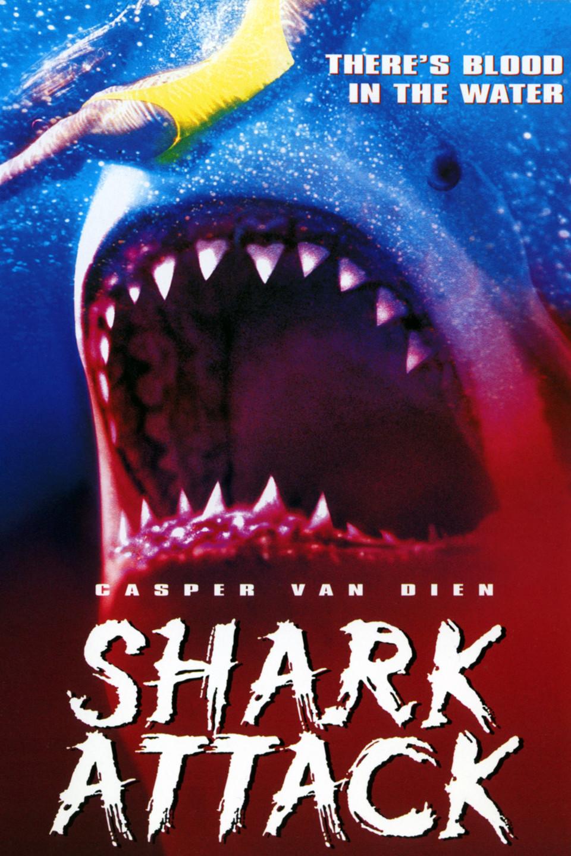 Shark 1999