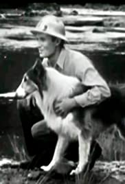 Lassie and the Loner Poster