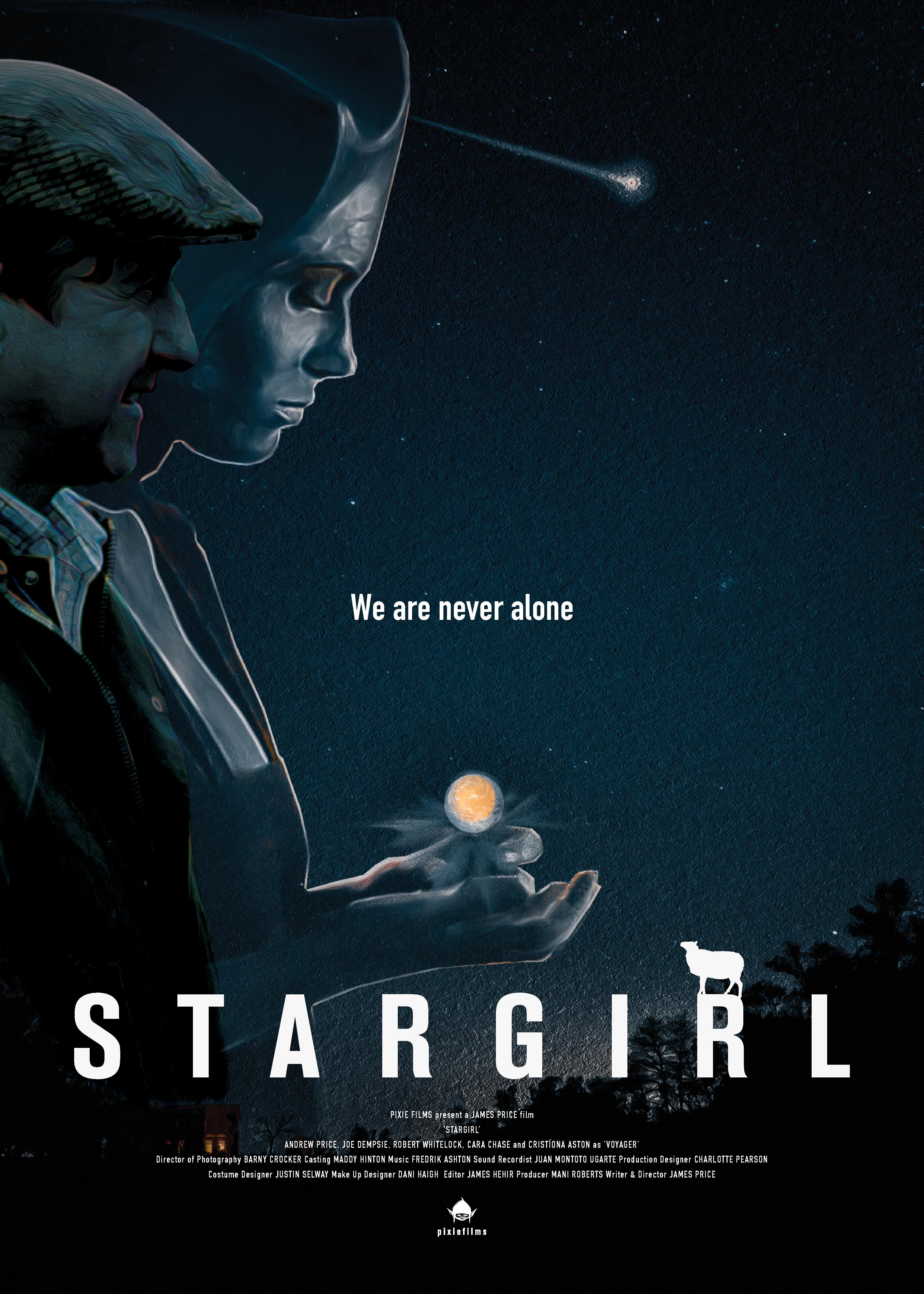 genre of stargirl