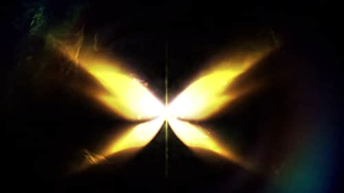 Fate: The Winx Saga: Season 2 (Dutch Teaser Trailer)