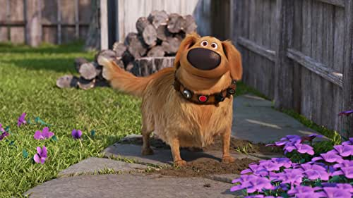 """""""Dug Days,"""" a new series of five shorts that follows the humorous misadventures of Dug, the lovable dog from Disney and Pixar's Oscar®-winning feature film 'Up' whose high-tech collar translates his thoughts into speech."""