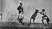 The Boxing Kangaroo (1896)
