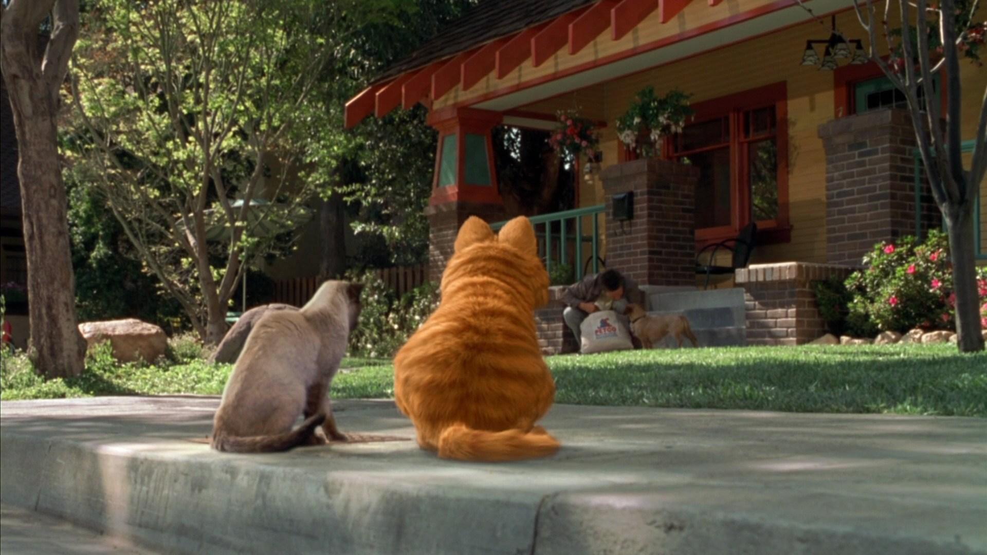Bill Murray in Garfield (2004)