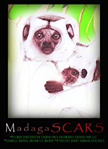 Watch me now movies Madagascar's Scars [Mp4]