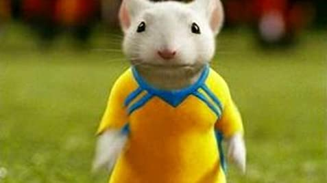 Image result for stuart little