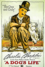 A Dog's Life (1918) Poster - Movie Forum, Cast, Reviews