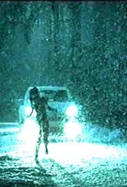 Schneetreiben Poster