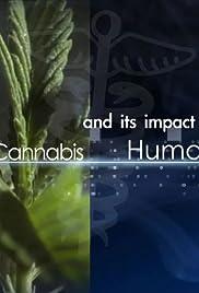 Medicinal Cannabis and its Impact on Human Health Poster