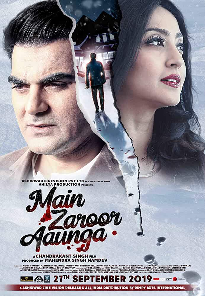 Main Zaroor Aaunga 2019 SM WebRip Hindi 720p x264 AAC