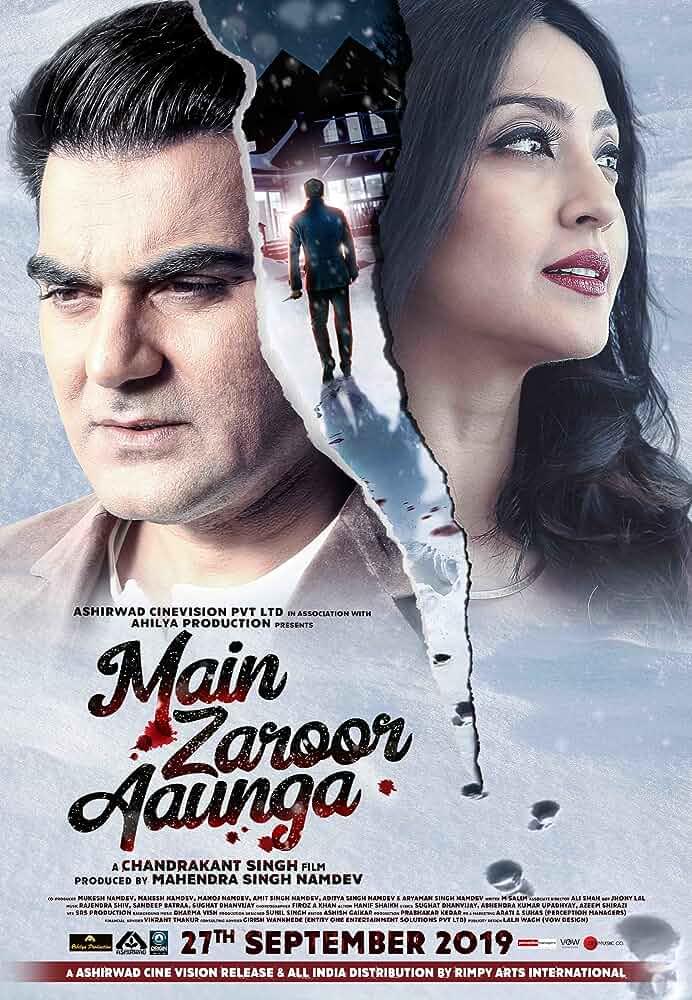Main Zaroor Aaunga 2019 SM WebRip Hindi 720p x264 AAC