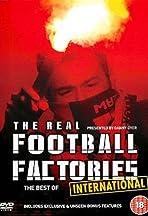 Football Hooligans International