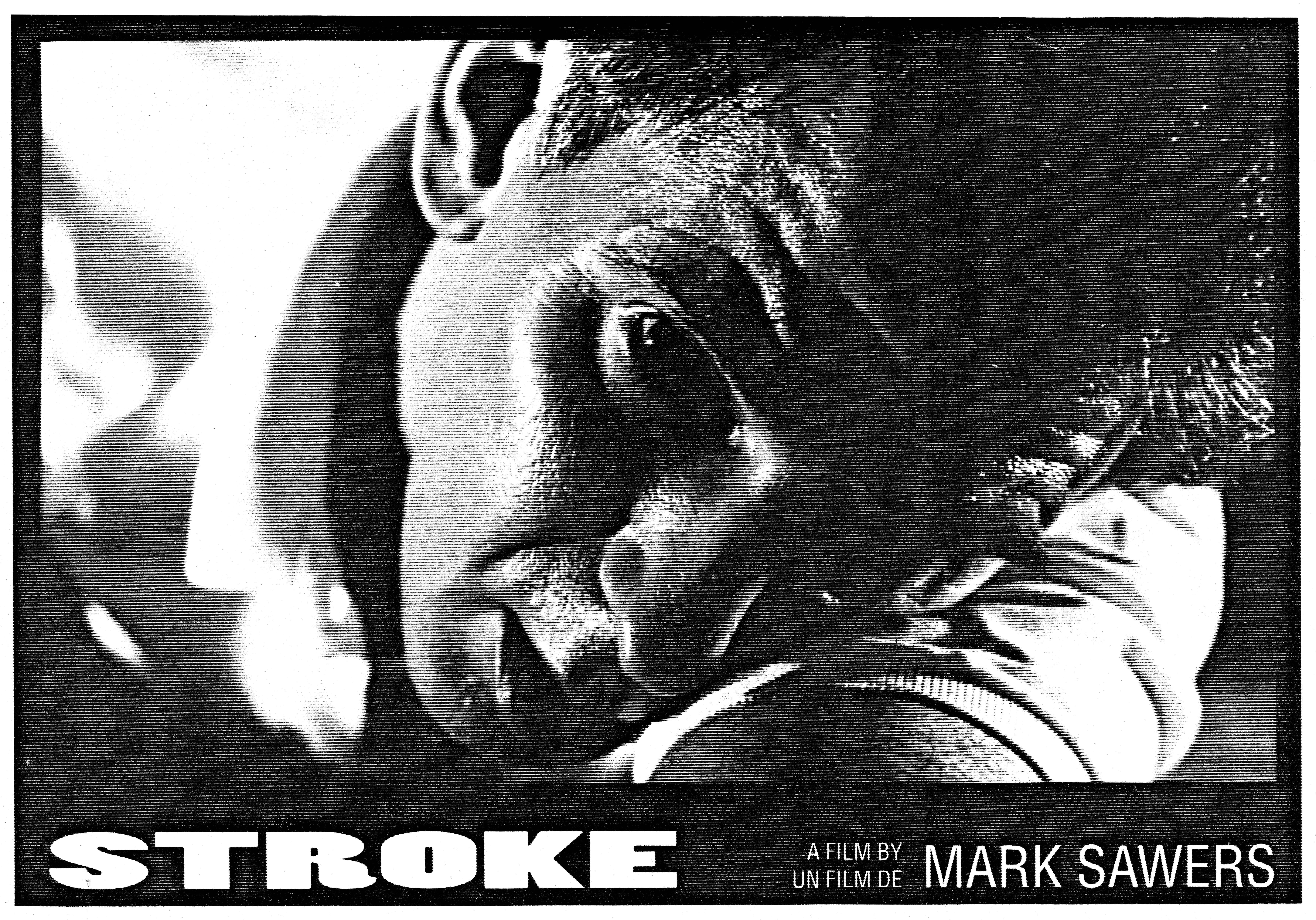 STROKE - Cannes Film Selection Canada & New Directors New Films NYC